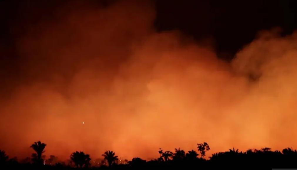 Bine că arde Pădurea Amazoniană și nu vreo catedrală, că fără oxigen mai putem trăi, dar fără popi dracu' ne ia!