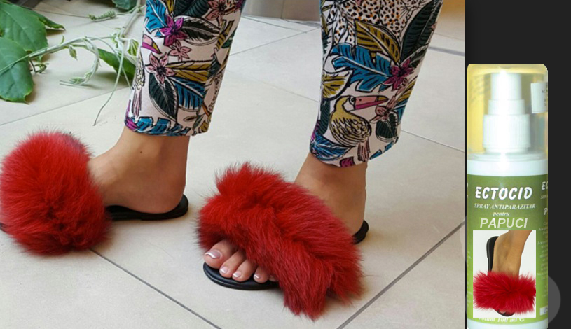 Nou: Spray-ul antipurici pentru papucii cu blană!