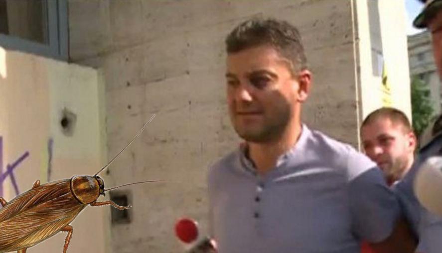 Incident în arestul poliției: Boureanu, bătut crunt de un gândac pe care a încercat să-l omoare!