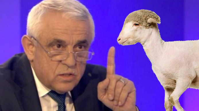 """Petre Daea: """"În România, oile se nasc gata shaved, nu se mai poartă hairy!"""""""