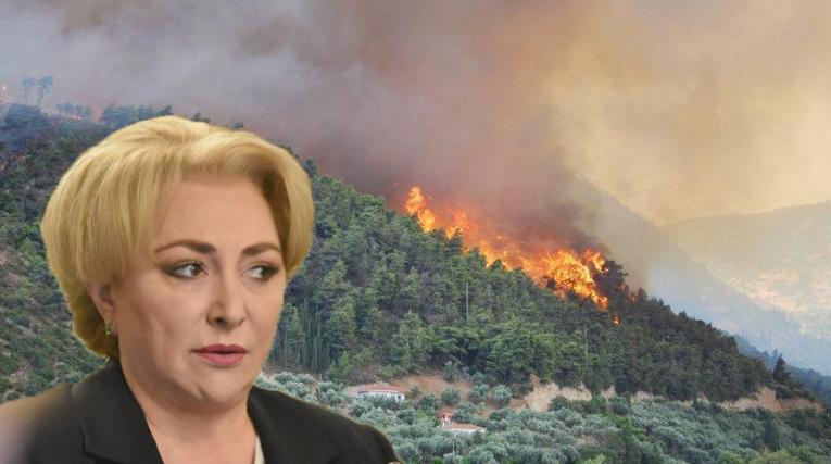 """Viorica: """"Am trimis în Grecia artificii pentru combaterea incendiilor!"""""""