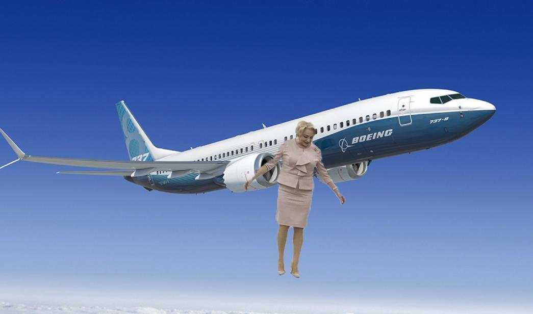 Veorica nu va mai ajunge în SUA! Aceasta a coborât din avion între stații, că făcea pe ea şi a văzut un lan de porumb!