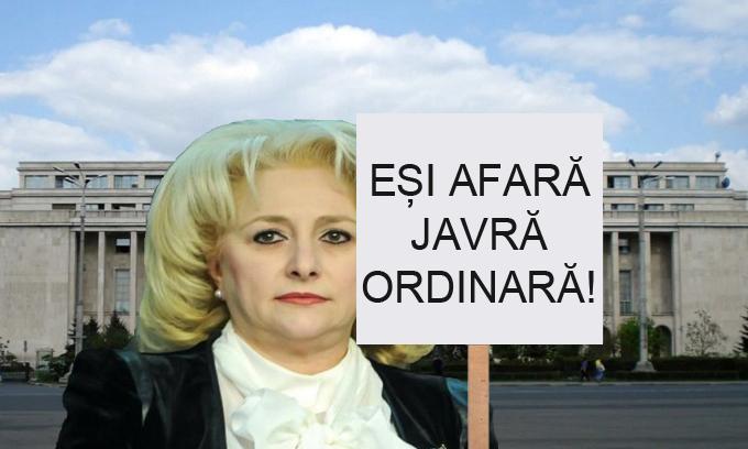 """La mitingul din fața Guvernului, Viorica va avea pancardă cu """"Eși afară javră ordinară!"""""""