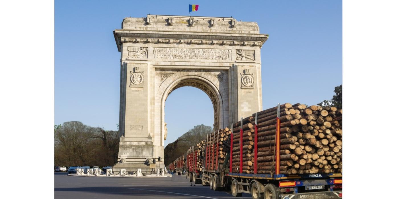 Anul ăsta, de 1 Decembrie vor defila şi camioanele cu lemne defrişate, pentru că au distrus mai mult decât un război!