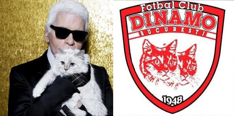 Pisica lui KarlLagerfeld a cumpărat clubul Dinamo!
