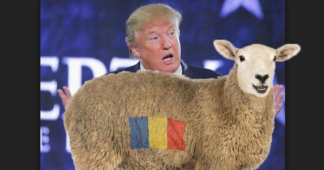 Alertă! Donald Trump cere României oi ca să atace Coreea de Nord!