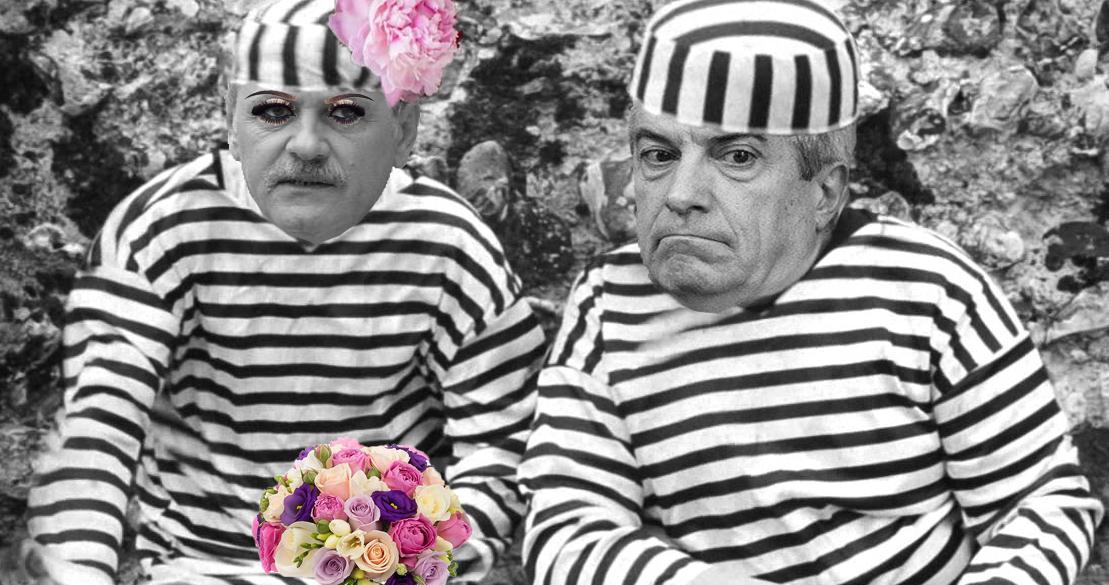 Referendum: Sunteți de acord ca Dragnea și Tăriceanu să formeze o familie tradițională la Rahova?