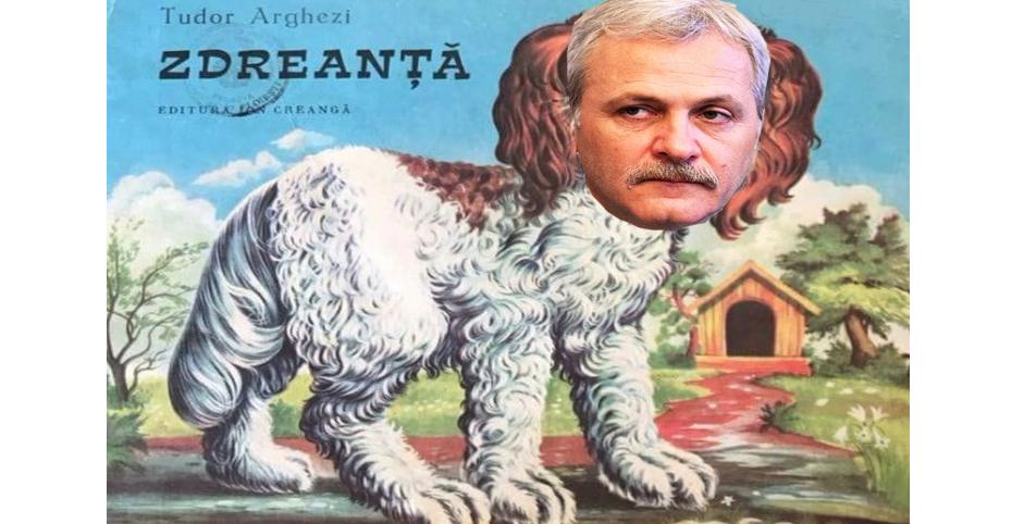 L-ați văzut cumva pe Zdreanță, cel ce fuge de instanță?