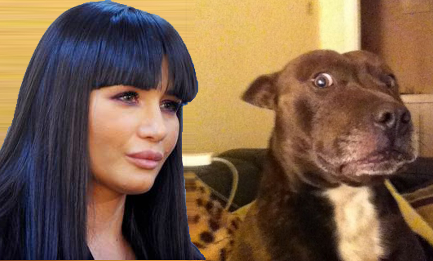 Șoc în familia Băsescu: EBA i-a spus câinelui că e adoptat!