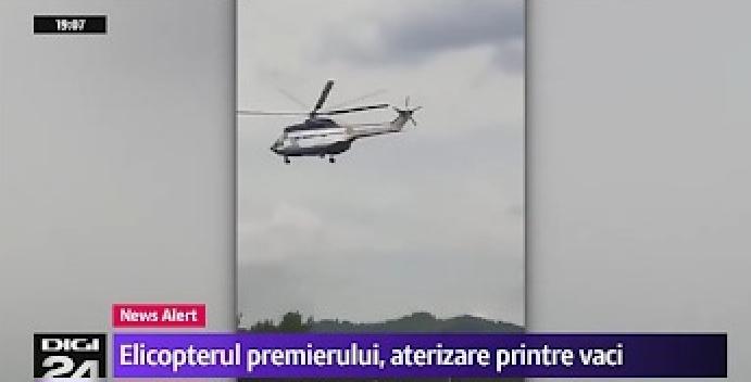 Elicopterul Veoricăi, aterizare cu peripeții din cauzacâtorva vaci venite să-și întâmpine surata