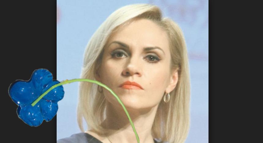Alertă! O floare de plastic s-a uscat după ce s-a uitat Firea la ea