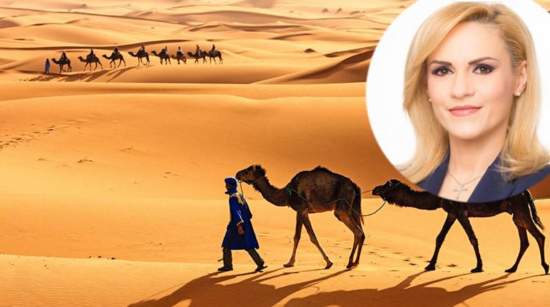 Beduinii o vorpe Firea primar în Sahara, ca să aibă și ei inundații!