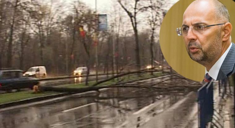 UDMR a revendicat furtuna care a doborât azi 65 de copaci în București!