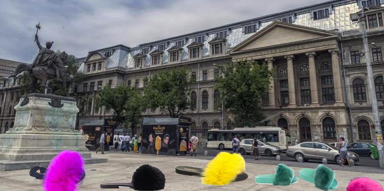 Bucureștiul s-a umplut de haite de papuci cu blană abandonați!