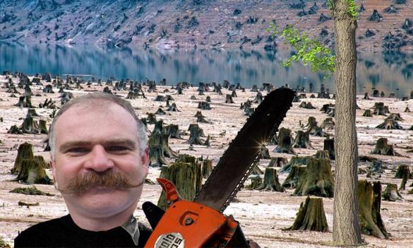 Ca să se evite incendiile de pădure, ultimul copac din Harghita a fost tăiat!