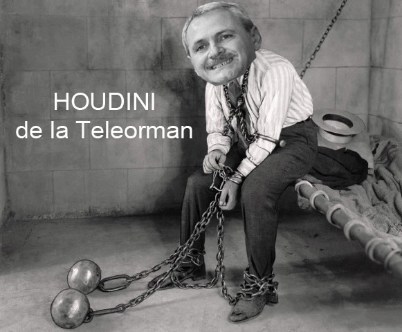 Houdini de la Teleorman