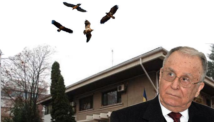 Să fie un semn? De câteva zile, vulturii se rotesc deasupra locuinței lui Ion Iliescu!