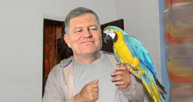Iohannis şi-a cumpărat un papagal vorbitor şi l-a învățat să tacă!