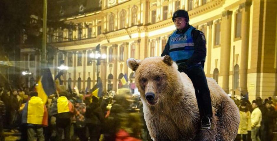 La Brașov, jandarmeria va merge la proteste călare pe urși!