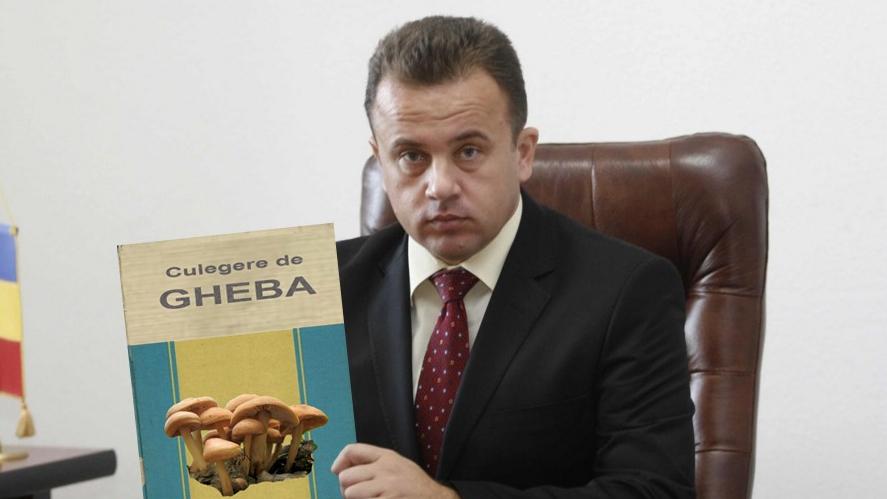 Matematicianul Liviu Pop a scos o culegere de Gheba pentru culegătorii de ciuperci!
