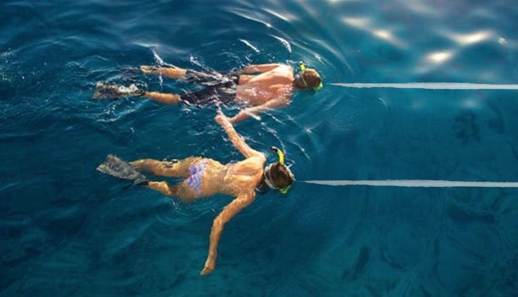 Nebunie la Mamaia: lumea a început să facă snorkeling!