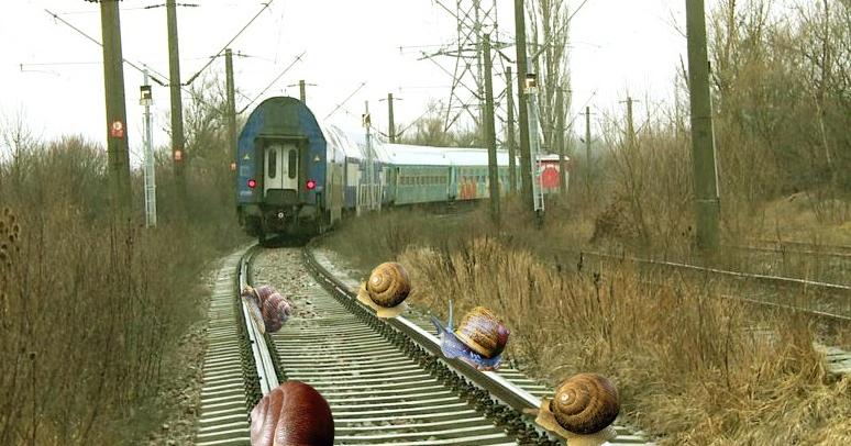 Haos feroviar spre Constanța: un tren se târâie pe șine și melcii nu au pe unde să treacă!
