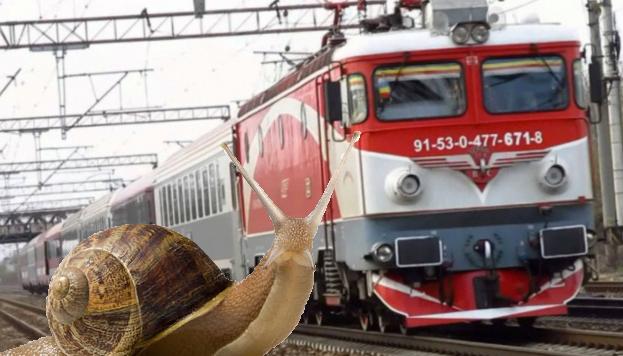 Un melc s-a dat jos dintr-un tren CFR și a luat-o pe jos, că se grăbea!