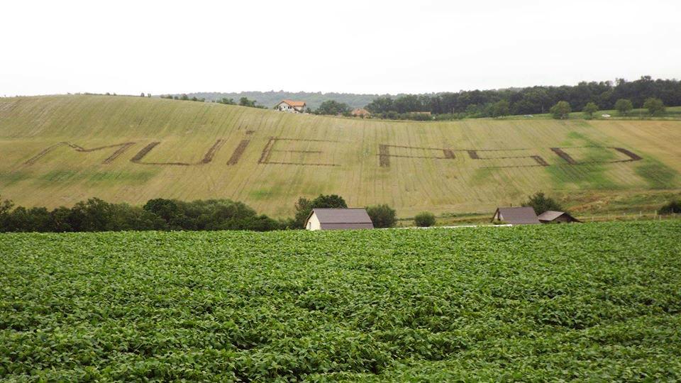 Extratereștrii plătiți de Soros au lăsat un mesaj pe un câmp de lângă Cluj!