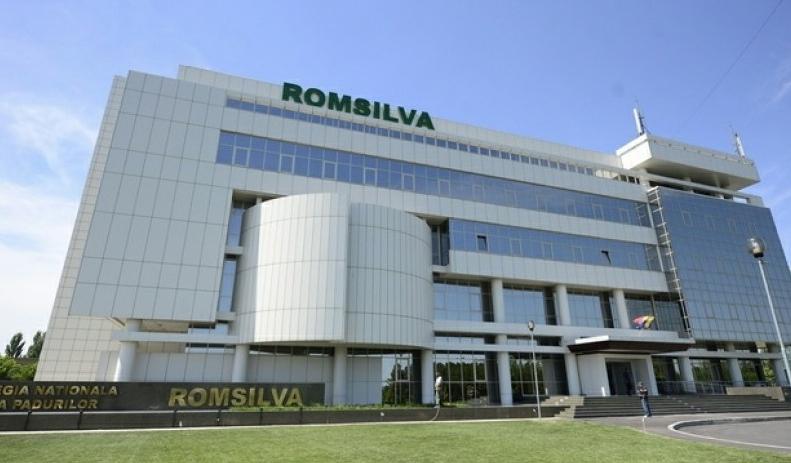 În România se taie 3 hectarede pădure pe oră. Ăsta e noul sediu Romsilva!