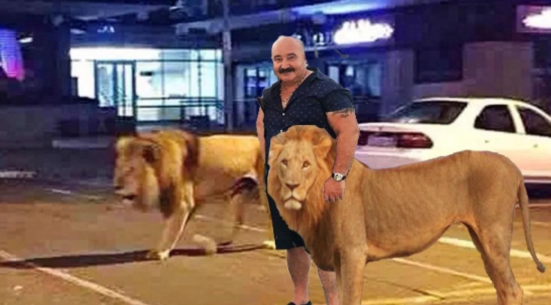 Nuțu Cămătaru respectă legea cu sfințenie: nu mai iese decât cu animalele de companie!