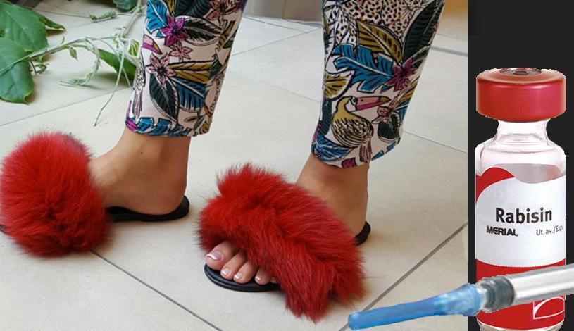 Pentru posesoarele de papuci cu blană:nu uitați să le faceți antirabicul!