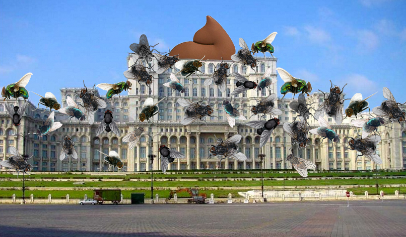 Alertă! Parlamentul României a fost acoperit integral de muște!