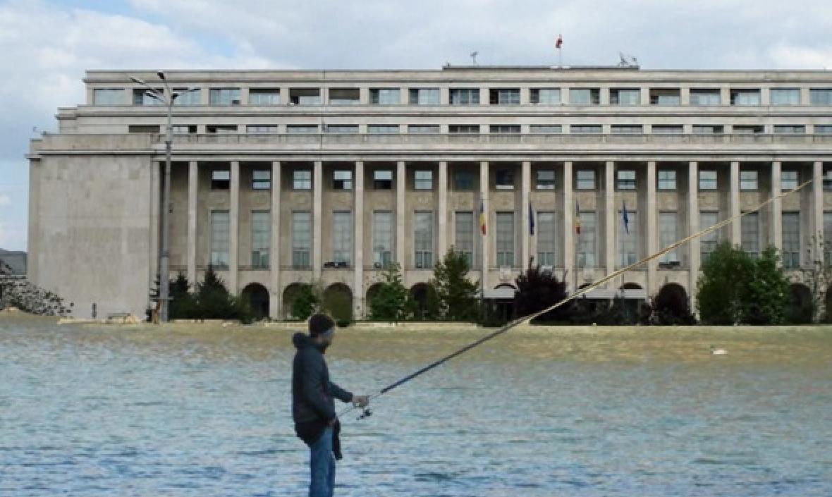 Concurs de pescuit în Piața Victoriei! Viermi și râme găsiți în clădirea guvernului!