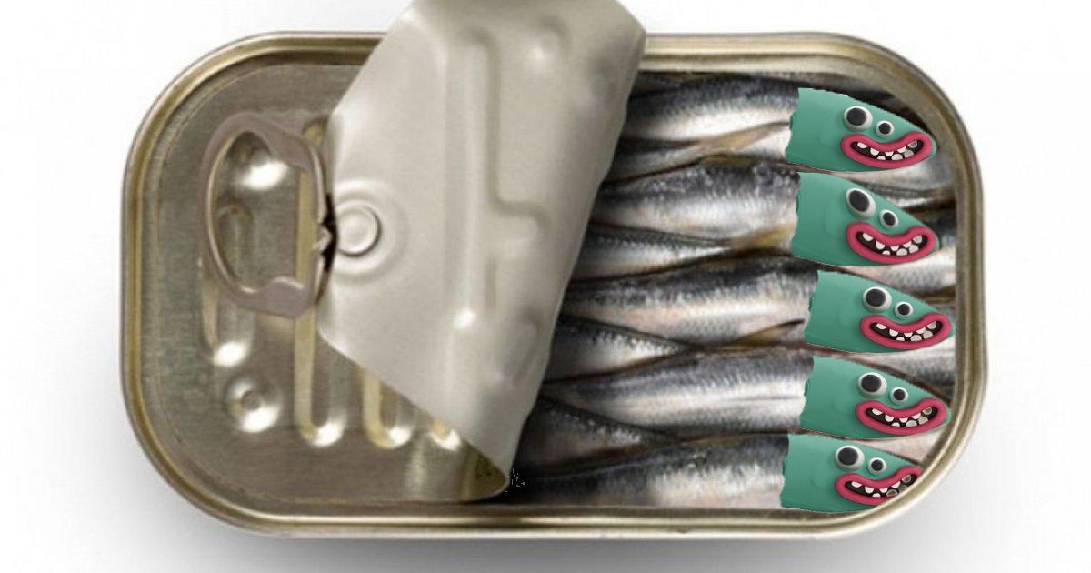 Ați văzut ce veseli sunt peștii din conservă de când cu cocaina de la mare?