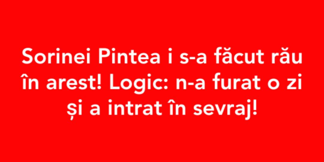 free sorina pintea