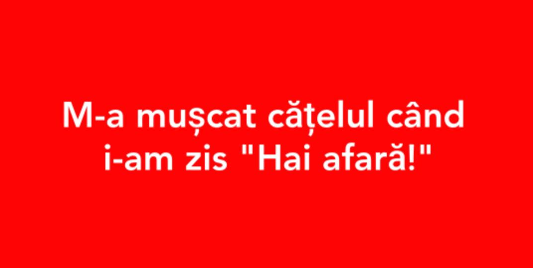 #ham-pus-o
