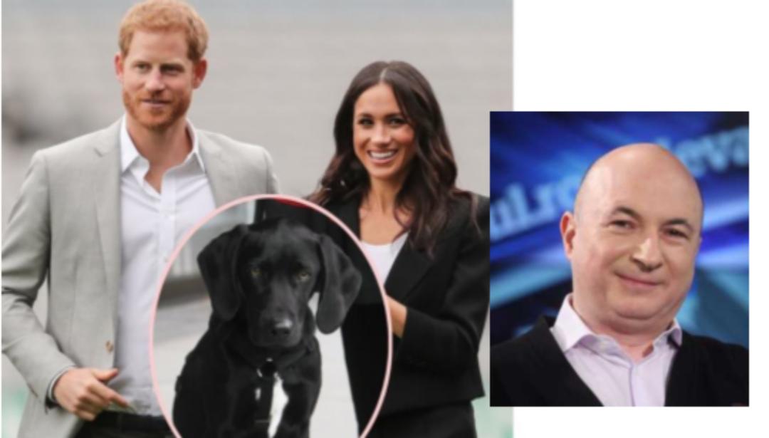 """Meghan și Harry explică de ce i-au pus câinelui numele """"Pula"""": """"Deoarece Codrin se pronunță greu în engleză!"""""""