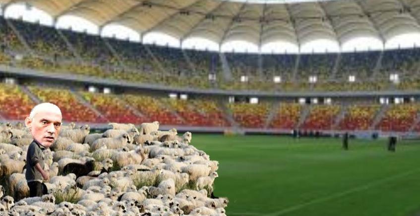 Dinamo a schimbat calendarul tradițional şi a început răvăşitul oilor primăvara!