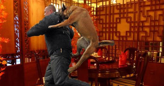 Restaurant chinezesc închis după ce puiul shanghai a atacat un inspector!