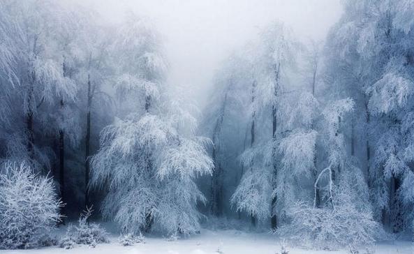 Atenţiune: cod roşu de poze cu zăpadă!