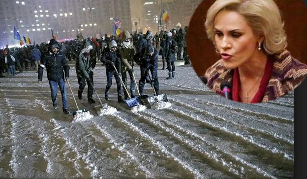 Firea vrea să plimbe guvernul într-un tir prin tot orașul, ca să-i curețe protestatarii zăpada