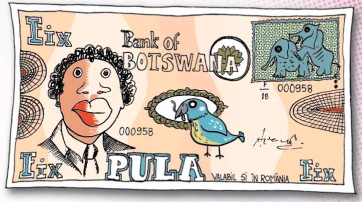 Fix bancnota din Botswana