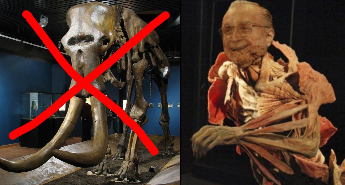 """Tolontan își cere scuze: """"Radiațiile vin nu de la mamuți, ci de la o fosilă și mai periculoasă: Ion Iliescu"""""""