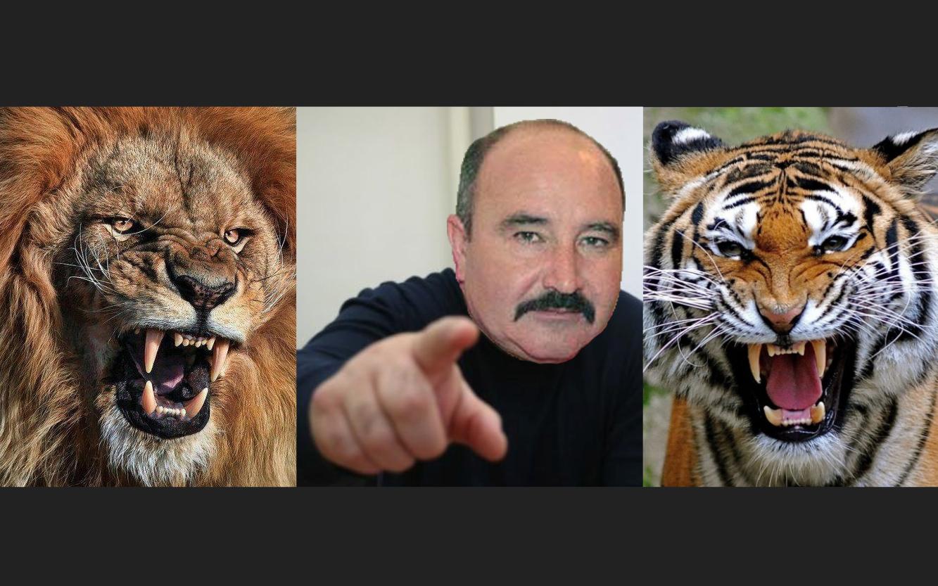 """Nuțu Cămătaru: """"Dumnezeu a făcut leii și tigrii pentru recuperări de bani, nu pentru circ"""""""