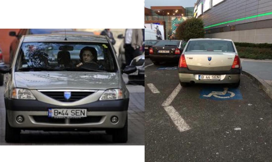 Doamna Andronescu, ați parcat ca un pesedist
