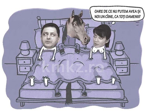 Absolut toate glumele despre Marean + Oana Mizil = love