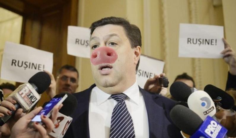 O nouă rasă de porc descoperită în Parlamentul României: porcul penal și antieuropean