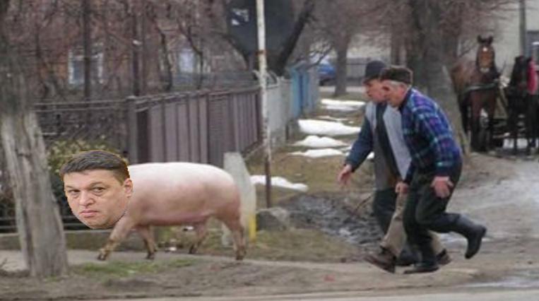 Șerban Nicolae era să fie tăiat de rudele de la țară după ce acestea l-au confundat cu un porc!