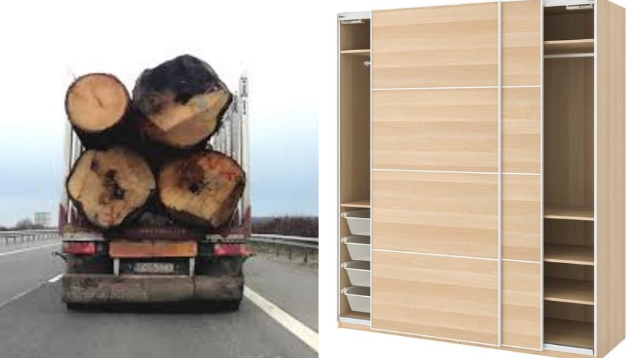 Ni se întorc valorile: un stejarplecat astă-vară din țară va reveni la Ikea Băneasa ca dulap!