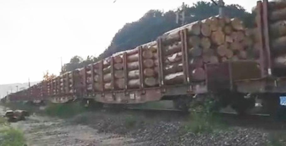 Furtuna a doborât sute de hectare de padure direct într-un tren cu 40 de vagoane, iar acum vântul împinge trenul spre graniță!